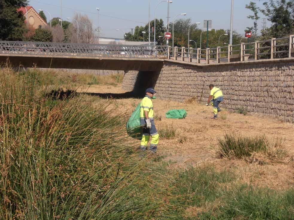 Limpieza río Monachil INAGRA -